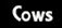 link to Cows